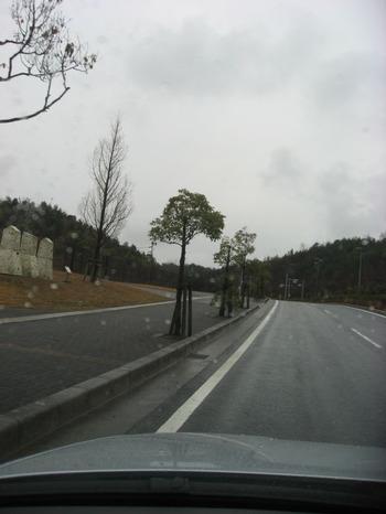 Img_7873